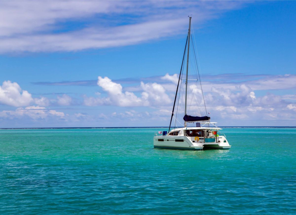 katamaran plynie po morzu